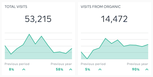 Total visits vs organic visits - seo monthly report